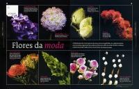 19_flores2.jpg